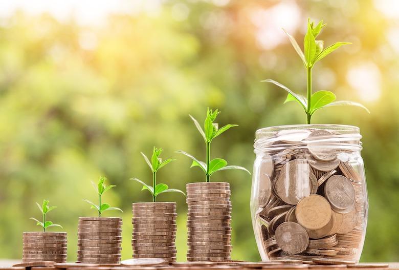 Saving / Investing / Growth